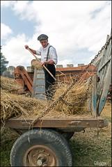 46me Fte de la Moisson  Provins (77) (GK Sens-Yonne) Tags: ftedelamoisson seineetmarne provins bl charrette fourche
