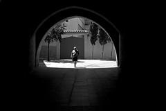 In dark (Daniel Nebreda Lucea) Tags: man hombre shadow sombra walk andar walking andando dark oscuridad hole agujero black white blanco negro city ciudad travel viajar canon zaragoza light luz dramatic drama dramatico urban urbano explore explorar shapes composition composicion perspective perspectiva circle people gente path paso sun sol summer monochrome monocromo bestcapturesaoi