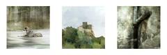 Serie du 09 08 15 : road in Cevennes (basse def) Tags: dogs cevennes villages herault castle walls
