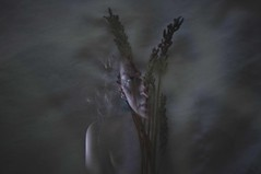 (Savannah Roberts) Tags: selfportrait portrait dark light naturallight headshot shadows reflection bare softlight imageoverlay overlay lavender body