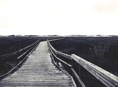 Camino a.... (_Zahira_) Tags: madera pasarela camino perspectiva paseo playa carnota costadamorte olympus uro e500 ngr nr lafotodelasemana virado