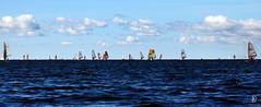 TWC Mammoth Race 2016 (kaprysnamorela) Tags: 250920160925 torontowindsurfingclub toronto twc mammoth race ontario lake water sail windsurfing club clouds outdoor nikond3300 canada cherrybeach