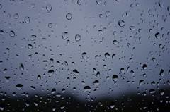 Un dimanche en Belgique (Alain G G) Tags: automne novembre belgique sunday pluie