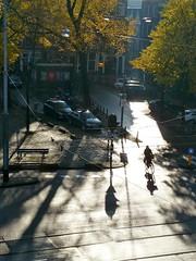 from my window (Gertie Jaquet) Tags: autumn shadow tree fall amsterdam bicycle herfst boom ombre elm frommywindow schaduw arbre vlo fiets haarlemmerplein iep uitmijnraam