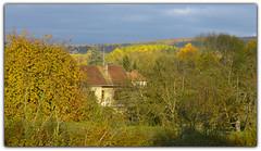 la lumire des arbres (doubichlou) Tags: france tree nature automne landscape burgundy what bourgogne arbre paysages ailleurs yonne