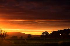 Red Wrekin (Natasha Bridges) Tags: morning red sky sunrise dawn shropshire fields wrekin