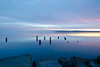 Mist beyond the Pilings, Tacoma (tacoma290) Tags: old morning pink sky mist water nikon rocks pacificnorthwest pugetsound tacoma pilings longevity pnw commencementbay mistbeyondthepilingstacoma