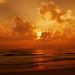 Sunrise Sweet