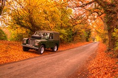 LAND ROVER HDR 16-11-2012 (Twiggy's Photography) Tags: autumn 3 leaves golden series landrover autumn2012
