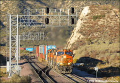 Westbound Control Signal Walker (El Roco Photography) Tags: california railroad santafe train canon outdoors photographer desert rail trains socal walker mojave transportation summit locomotive ge silverwood railfan bnsf trainspotting cajon desertlandscape mojavedesert freighttrain sanbernardinocalifornia desertflora inlandempire sanbernardinocounty pilgrimhill forestservice emd atsf usfs burlingtonnorthernsantafe desertmountains cajonpass es44dc gevo railfans alltrains alray stacktrain bnsfrailroad traininaction burlingtonnorthernsantaferailroad hill582 movingtrains desertshrub desertbeauty deserttrains aphotographersnature elrocophotography sanbernardinorailroads 3n45 forestserviceroad3n45 bnsfcajonsubdivision wbcswalker
