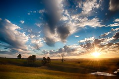 Into the Sun (paulhollins) Tags: newsouthwales aus woodville nikond90