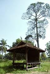WAKAF NAGA (Jingles.) Tags: temple dragon siamese hut thai malaysia naga kelantan wakaf
