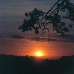 December Sun