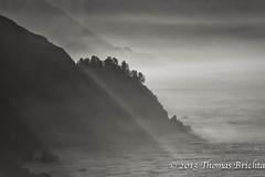 Big Sur Mist (tom911r7) Tags: california leica blackandwhite bw white mist black fog silver big thomas 4 bigsur v pro sur lux efx brichta tom911r7 thomasbrichta silverefxpro vlux4