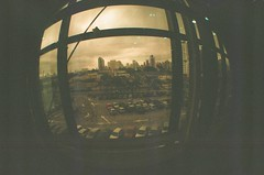 #333 ([ iany trisuzzi ]) Tags: brazil film brasil analog 35mm analgica saopaulo fisheye sp fisheye2 day333 project365 365days
