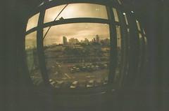 #333 ([ iany trisuzzi ]) Tags: brazil film brasil analog 35mm analógica saopaulo fisheye sp fisheye2 day333 project365 365days