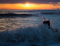 (Neil Nicklin Photography) Tags: morning sky cloud sun canon point waves yorkshire splash splashes spurn yorkshirewildlifetrust