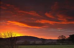 Dawn Red (Natasha Bridges) Tags: morning trees red sky clouds sunrise dawn countryside shropshire fields wrekin