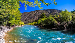 Dingqu River (Feng Wei Photography) Tags: china travel bridge panorama color tree nature beautiful beauty horizontal river relax landscape scenery colorful asia view outdoor turquoise relaxing scenic peaceful sunny panoramic clear vista tibetan serene riverbank relaxed sichuan tranquil ganzi garze xiangcheng dingqu dingquriver