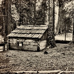 This cabin was used as a storehouse by the US Cavalry who patrolled Kings Canyon National Park until 1913. (Travelingtuna) Tags: square squareformat kingscanyonnationalpark iphoneography instagramapp uploaded:by=instagram foursquare:venue=4da5f33393a01f42fad18fce