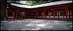 Hikawa Shrine (lesliegill) Tags: 2016 colour japan july omiya park rainyseason shrine sigmasdq sunny