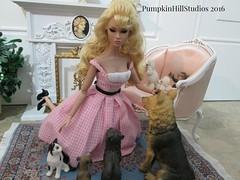 Ellie Mae Poppy & her critters (Pumpkin Hill Studios/King William Miniatures) Tags: dioramas beverlyhillbillies 16scale playscale bespaq poppyparkergoestoparis