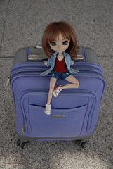 Queen of luggage (Erla Morgan) Tags: doll pullip pullipsouseiseki souseiseki souki erlamorgan luggage suitcase