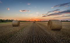 Late Summer II (daniel_moeller) Tags: straw strawbales strohballen hay haybales field sunset sun sonnenuntergang sonne sky evening abend feld agriculture landwirtschaft landscape landschaft wideangle samyang12mmf2ncscs sonyalpha6000 sachsen saxony deutschland germany europa europe