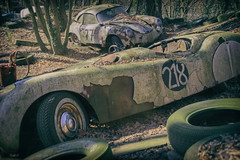 Chequered Past (Martyn.Smith.) Tags: rust decay sports cars racing vintage decaying corroded