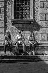 trextre (Giulio Mazzini) Tags: street photo bn bw siena sienna toscana strada girl campo cavalli contrade festa luglio nicchio palchi palio piazza provenzano tradizione tufo