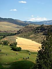 Pool of Gold (nimbus55) Tags: idaho snakeriver river valley