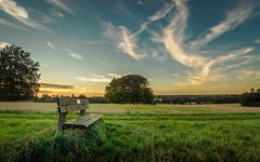The Bench (dave.tay1or) Tags: 2016 918mm autumnfall countryside em5 em5mark2 em5mk2 em5markii flickr hampshire hdr landscape lightroom lr6 m43 mzuiko mft microfourthirds nature olympus omd photomerge rural sunset