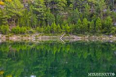Mirror (raulmartinezbeneyto) Tags: photography color green nikon cuenca castilamancha espaa nationalgeigraphic ngc wwf wwfspain greenpeace