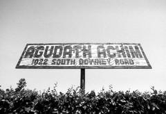Exa 1C Mount Zion Cemetery 1 () Tags: vintage retro classic losangeles la california history 35mm film camera exa exakta dresden veb pentacon eastgermany ddr gdr
