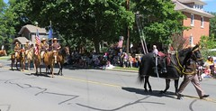 Monroe County Sheriffs - Honoring Heroes of 9/11 (Hear and Their) Tags: good old days parade richmond michigan heroes honouring honoring police mounted horse equestrian