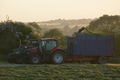 Deutz Fahr DX Tractor with a JF FCT900 Trailed Silage Harvester filling a Silage Trailer drawn by a Case IH Maxum 115 Tractor (Shane Casey CK25) Tags: deutz fahr dx tractor jf fct900 trailed silage harvester filling trailer drawn case ih maxum 115 cnh sdf samedeutzfahr deutzfahr red green ballyduff vintage silage16 silage2016 grass grass16 grass2016 winter feed fodder county ireland irish farm farmer farming agri agriculture contractor field ground soil earth cows cattle work working horse power horsepower hp pull pulling cut cutting crop lifting machine machinery nikon d7100 traktori tracteur traktor trekker trator cignik collecting waterford