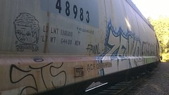 Train Art (Chevrolet Wagoneer's) Tags: portland oregon 503 ptown pdx pnw union pacific northwest rail art road moniker guams zenko abuse