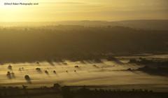 Light, Shadows and Mist (Daryl 1988) Tags: mist misty glastonbury somerset landscape landscapephotography weather uk nikon england sunrise light sky sunlight beautiful wow amazing horizon vista view