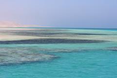 IMG_3214_Hurghada 2016 the best of (Adam Is A D.j.) Tags: mahmya hurghada red sea egypt