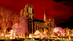 My Paris (nyomee wallen) Tags: paris romance french pariscity prettyinred beautifulcityofeurope