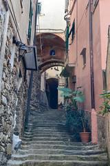 (ola_alexeeva) Tags: italy terre 5      cinque september sun  liguria  mountains narrow street  stairs