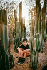 don't touch (demandaj) Tags: cacti cactus green sunflare sun sunset ca oc socal explore amandatipton boy quiet donttouch 35mm nikon vsco kids