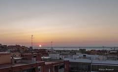 sortida de sol (nuri_bri) Tags: sunrise salidadelsol sortidadesol dawn amanecer sun sol costa mediterraneo mediterr