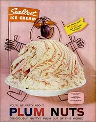 Plum Nuts Sealtest Ice Cream 1958 (1950sUnlimited) Tags: food design desserts icecream 1950s packaging snacks 1960s dairy midcentury snackfood sealtest
