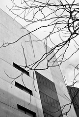 Oppositions - Paris (Remy Carteret) Tags: blackandwhite bw white paris automne canon eos blackwhite noir noiretblanc nb mk2 5d canon5d bercy arbre immeuble mkii markii branche mark2 immeubles blancblack branchedarbre canoneos5dmarkii 5dmarkii canon5dmark2 5dmark2 canon5dmarkii branchearbre canoneos5dmark2 remycarteret rémycarteret