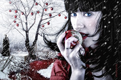 The wishing apple. (dMad-Photo) Tags: paisajes snow art apple digital portraits landscape tales manzana nieve digitalart retratos snowwhite tale blancanieves cuentos madariaga mjdmg dmadphoto dmadphotogmailcom