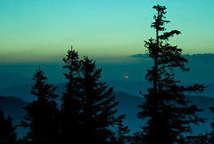 Winter blues (zoomion) Tags: blue sunset orange sun green schweiz switzerland sonne solothurn tanne hasenmatt