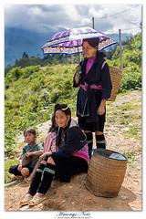 Hmong Noir (Sapa) (www.DigitRegards.com) Tags: vietnam sapa hmong canoneos5dmarkiii