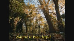 Nature is Wonderful, 12 December 2012,... 001 (al blunden) Tags: natureiswonderful decembervideo2012