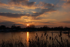 Sunset at Oulton Broad, Suffolk (Kirkleyjohn) Tags: winter light sunset sky sun water silhouette clouds reeds atardecer suffolk sonnenuntergang pôrdosol coucherdusoleil norfolkbroads oultonbroad